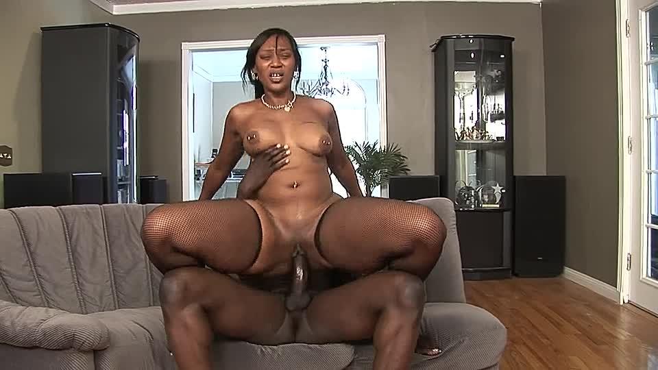 freie fette kurvige schwarze hintern titten